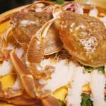 兵庫県柴山漁港の名産カニ、柴山ガニとは?柴山蟹の旬や解禁日