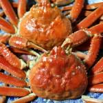 京丹後の名産カニ、間人ガニ(たいざがに)とは?間人蟹の旬や解禁日