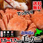2015/11/25【マルゲン後藤水産】完売必至!味濃く甘みのある一級品のBIG毛ガニを3尾セットで!