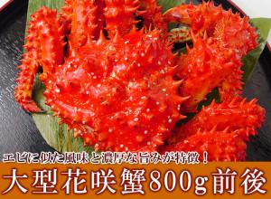 大型花咲蟹姿800g前後