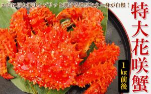 特大花咲蟹姿1kg前後