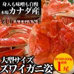 2015/12/04【マルゲン後藤水産】本日15:59まで!ギフト用ずわい蟹姿を丸々1尾販売!