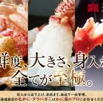2015/12/07【かにと言えば北海道北釧水産】鮮度、大きさ、身入れ、全てが至極の毛がに&タラバを大特集!