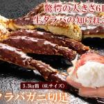 2015/12/09【最北の海鮮市場】驚愕の大きさ6Lサイズ!超特大『生冷タラバガニ切足』を限定販売です!