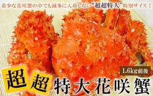 超超特大サイズ花咲ガニ姿(ボイル冷凍)