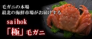 saihok「極」毛ガニ姿