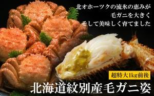 北海道紋別産毛ガニ姿1kg前後(ボイル冷凍)