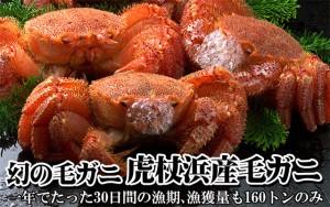 北海道虎杖浜産毛蟹(ボイル冷凍)